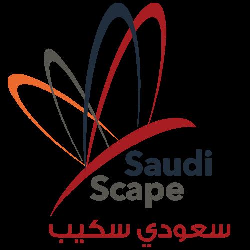 Saudi Scape